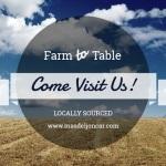 Farm to table - Mas del Joncar