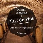 Tast de vins - Mas del Joncar