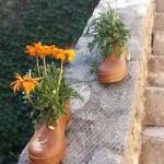 Botes amb flors - Temps de Flors Girona